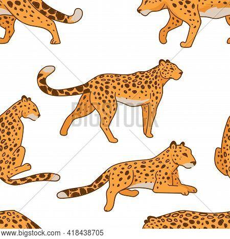 Leopard Print, Predator In Motion Wild Animal