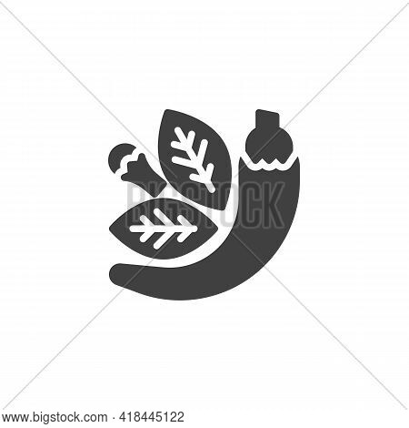 And Herbs Vector Icon. Filled Flat Sign For Mobile Concept And Web Design. Culinary Herbs Glyph Icon