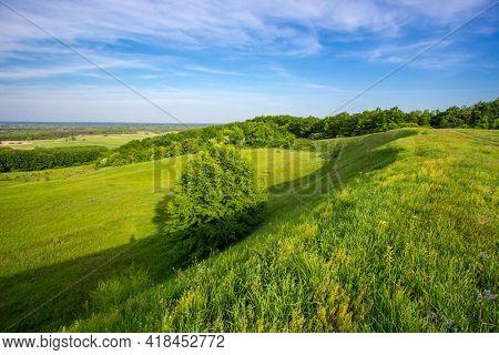 Green grassland on hill slope under spring sky