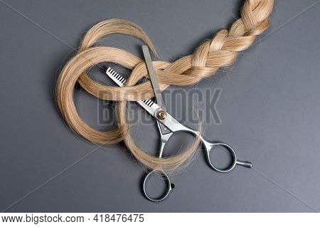 Hairdresser Professional Thinning Scissors Or Shears With Braid Strand Of Blonde Hair On Grey Backgr