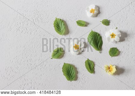 Spring, Easter Floral Pattern. Decorative Composition Of Green Hazel Tree Leaves. White And Yellow P
