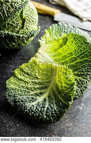 Green savoy cabbage leaf. Fresh vegetable