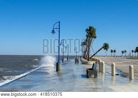 Waves On Lake Pontchartrain And Leaning Palm Tree In New Orleans Following Hurricane Zeta