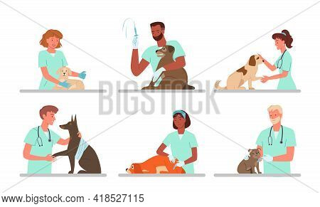 Patient Dogs Appointments At Veterinary Clinic, Vet Doctor Working, Holding Sad Doggy