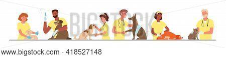 Veterinary Clinic Hospital, Healthcare Service, Visit To Veterinarian Doctor, Vet Checkup