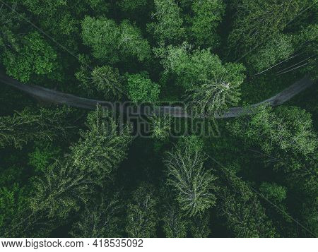 Aerial View Of Country Road Or Footpath In The Forest, Drone View