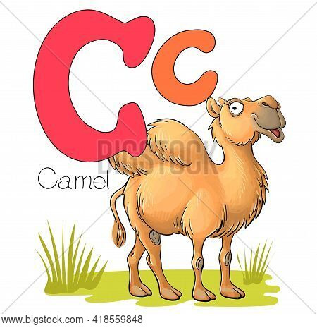 Vector Illustration. Alphabet With Animals. Large Capital Letter C With A Picture Of A Bright Cute C