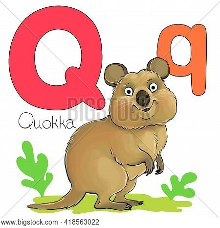 Vector Illustration. Alphabet With Animals. Large Capital Letter Q With A Picture Of A Bright Cute Q