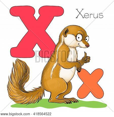 Vector Illustration. Alphabet With Animals. Large Capital Letter X With A Picture Of Bright Cute Xer