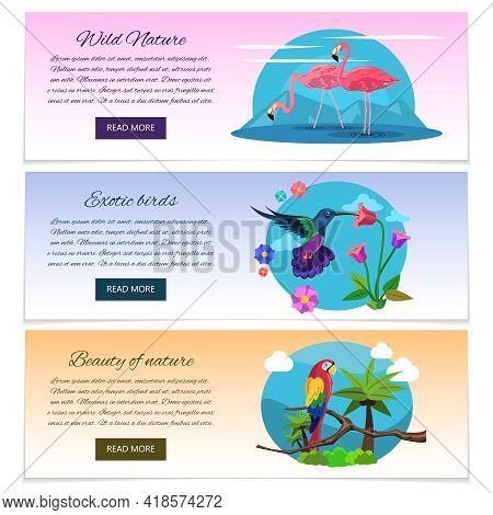 Tropical Bird Banner Horizontal Set With Pink Flamingo Colibri And Parrot Isolated Vector Illustrati