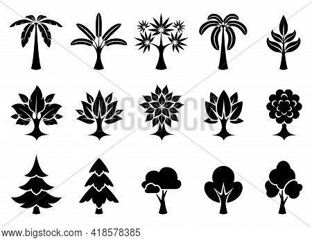 Trees Icon Set. Various Christmas Trees, Palm Trees, Deciduous Trees. Black Silhouette On White Back