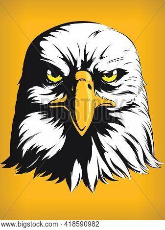 Eagle Falcon Hawk Head Cartoon Front View Vector Clipart Drawing