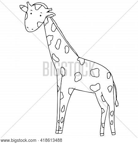 Vector Illustration With A Giraffe In Doodle Style. An Image With A Giraffe That Can Be Colored.