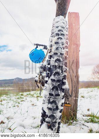 Winter Biking. Detail Of Rear Mountain Bike Tire With  Snow Between High Grips. Sport Winter Backgro