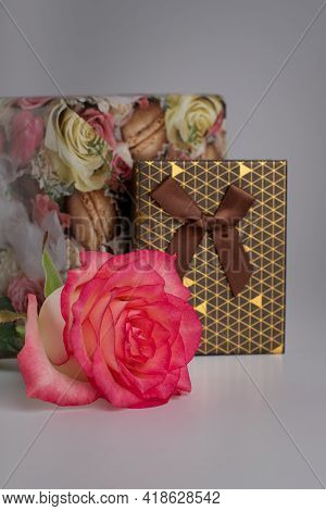 Gift Boxes For Jewelry And Pink Roses. Jewelry Boxes. Surprise For Your Girlfriend