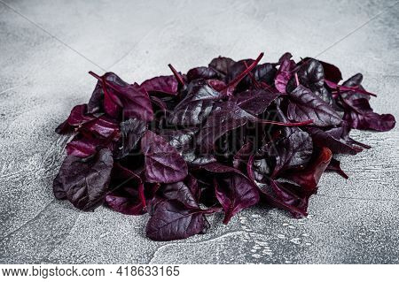 Leaves Of Swiss Red Chard Or Mangold Salad. White Background. Top View