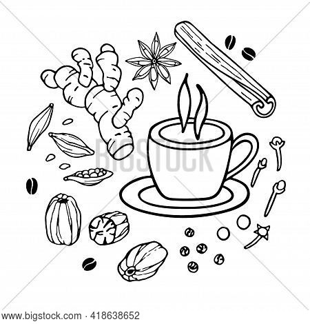 Cup Of Coffee And Sketch. Coffee Ingredients Set. Hand Drawn Coffee Recipe With . Doodle Outline Vec