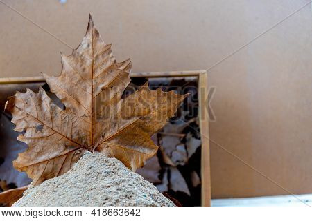 Maple Leaf On Wooden Background. Background, Pattern. Maple Tree Leaves. Autumn Signs. Maple Leaves