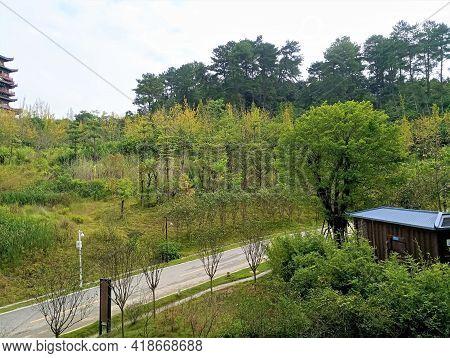 Green Path In A Resort In Hezhou City, Guangxi, China