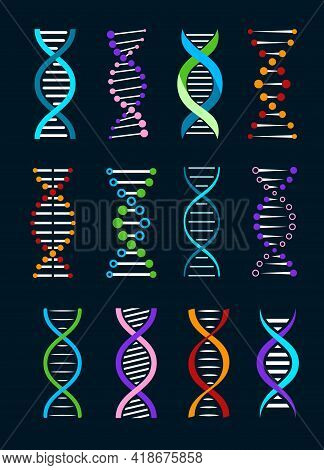 Dna Helix Isolated Vector Icons Of Genetics And Biotechnology Science. Spiral Strands Of Gene Legacy