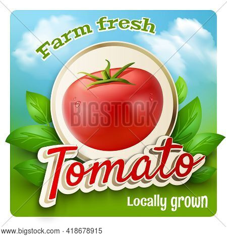 Farm Market Promo Poster With Realistic Tomato And Green Leaves On Background Vector Illustration