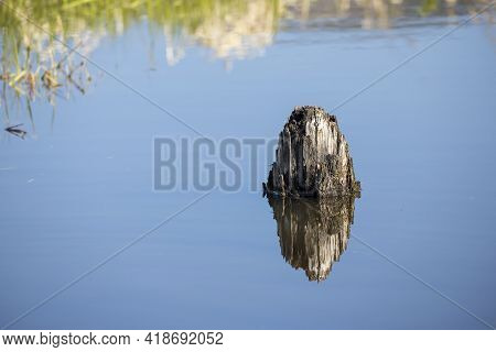 An Abstract Photo Of A Wooden Stump In Calm Water Wasting A Mirror Like Reflection Near Clark, Fork,