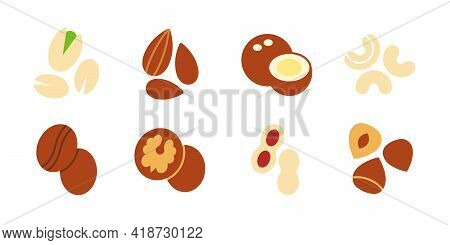 Nuts Icon Set. Vector Flat Color Icon Of Nuts Isolated On White. Almond Cashew Coffee Hazelnut Peanu