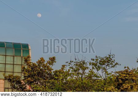 Full Moon Rising In Blue Sky Over Building And Row Of Tree Branches.