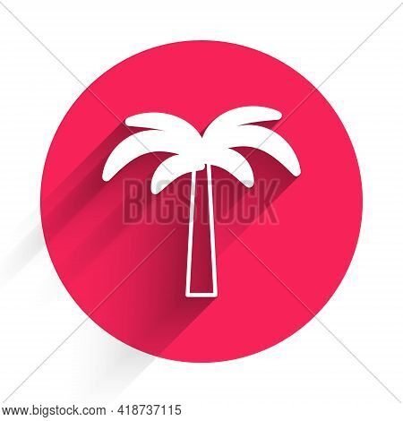 White Tropical Palm Tree Icon Isolated With Long Shadow. Coconut Palm Tree. Red Circle Button. Vecto