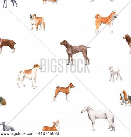 Beautiful Seamless Pattern With Cute Watercolor Hand Drawn Dog Breeds Cocker Spaniel Greyhound Hound