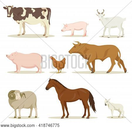 Cartoon Domestic Animals Vector Illustrations Set. Collection Of Farm Animals, Hen, Horse, Sheep, Go
