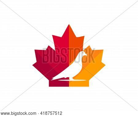 Maple Dove Logo Design. Canadian Dove Logo. Red Maple Leaf With Dove Vector