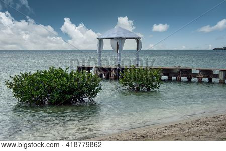 White Sandy Beach With Plants Emerging From The Water With A Breakwater And A White Wedding Tent In