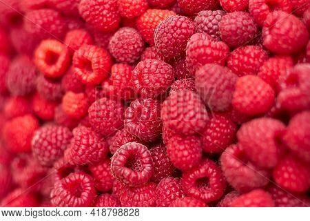 Sweet Raspberry. Raspberries - Raspberry Texture Background. Top View Of Heap Of Raspberry As Textur