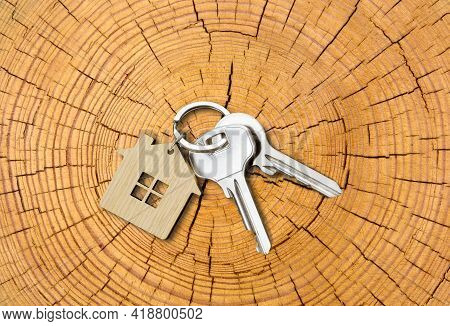 House Key Pair With House Shaped Keyring On Cutted Tree Trunk With Growth-rings Background. Top View