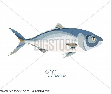 One Isolated Tuna Fish Made In Flat Style. Colored Tuna Without Outlines, With Light Glare And Shado