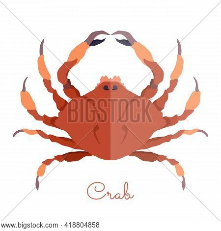 One Isolated Crab Made In Flat Style. Colored Crab Without Outlines, With Geometrical Shadows. Fresh
