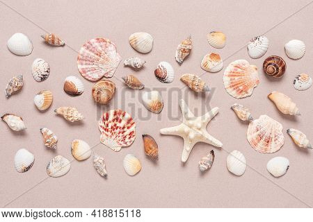 Beautiful Summer Composition Of Various Seashells. Seashells And Starfish On A Beige Craft Paper Bac
