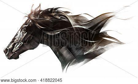 Drawn Portrait Of Muzzle Animal Horse On White Background