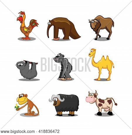 Collection Of Hipster Cartoon Character Animals Rooster, Anteater, Sloth, Camel, Monkey, Bison, Cow