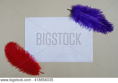 Two-color Background. White Rectangular Blank Textile Background On A Light Background, With A Decor