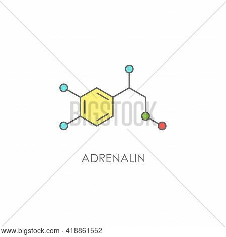 Adrenalin Molecula Structure. Colorful Line Icon Isolated On White Background. Hormone Epinephrine,