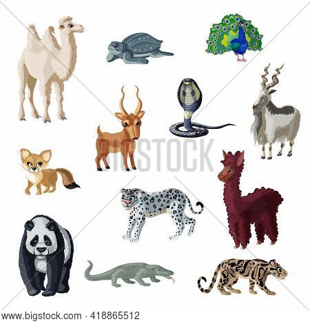 Cartoon Colorful Asian Animals Collection With Wild Mammals Reptiles And Bird Isolated Vector Illust