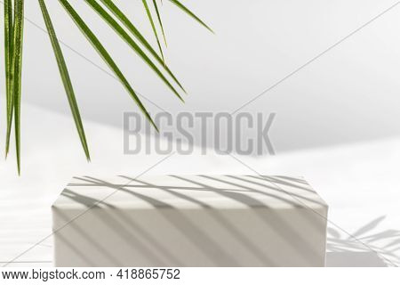 White Podium With Palm Leaves On White Background. Concept Scene Stage Showcase For Product, Promoti