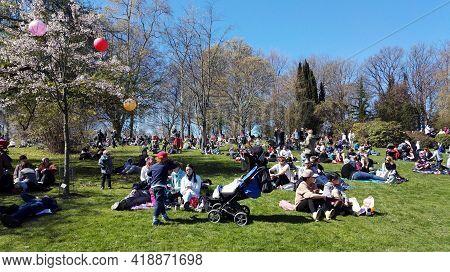 Gothenburg, Sweden - April 30 2017: Cherry Blossom Festival Botaniska