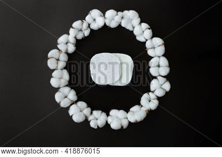 Circle Of Cotton Flowers With Cotton Makeup Pads On Black Steel And Paper Background. Ideal For Orga