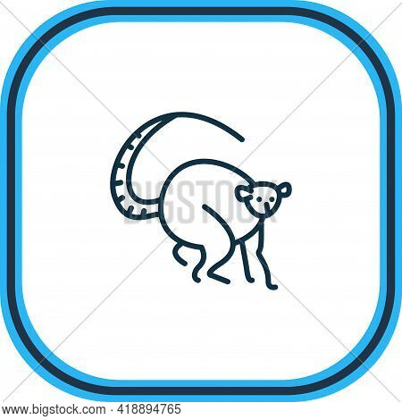 Vector Illustration Of Lemur Icon Line. Beautiful Zoo Element Also Can Be Used As Primate Icon Eleme