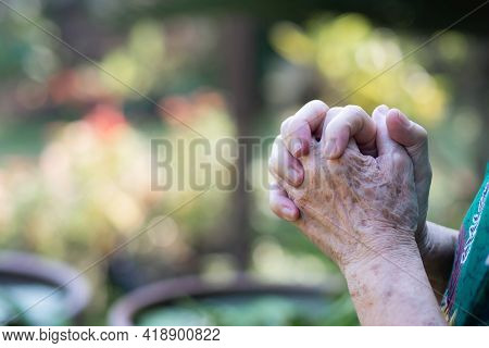 Close-up Of A Senior Woman Hands Joined Together While Standing In Garden. Focus On Hands Wrinkled S