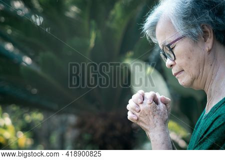 A Portrait Of A Senior Woman Hands Joined Together While Standing In A Garden. Focus On Hands Wrinkl
