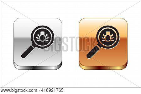 Black Flea Search Icon Isolated On White Background. Silver-gold Square Button. Vector